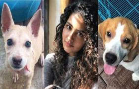 Anupama Parameswaran mourns the loss of her pet dogs: The pain is unbearable