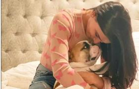 Samantha Akkineni's doggo Hash steals neighbour's soft toy: Actress says 'failed as a mom'